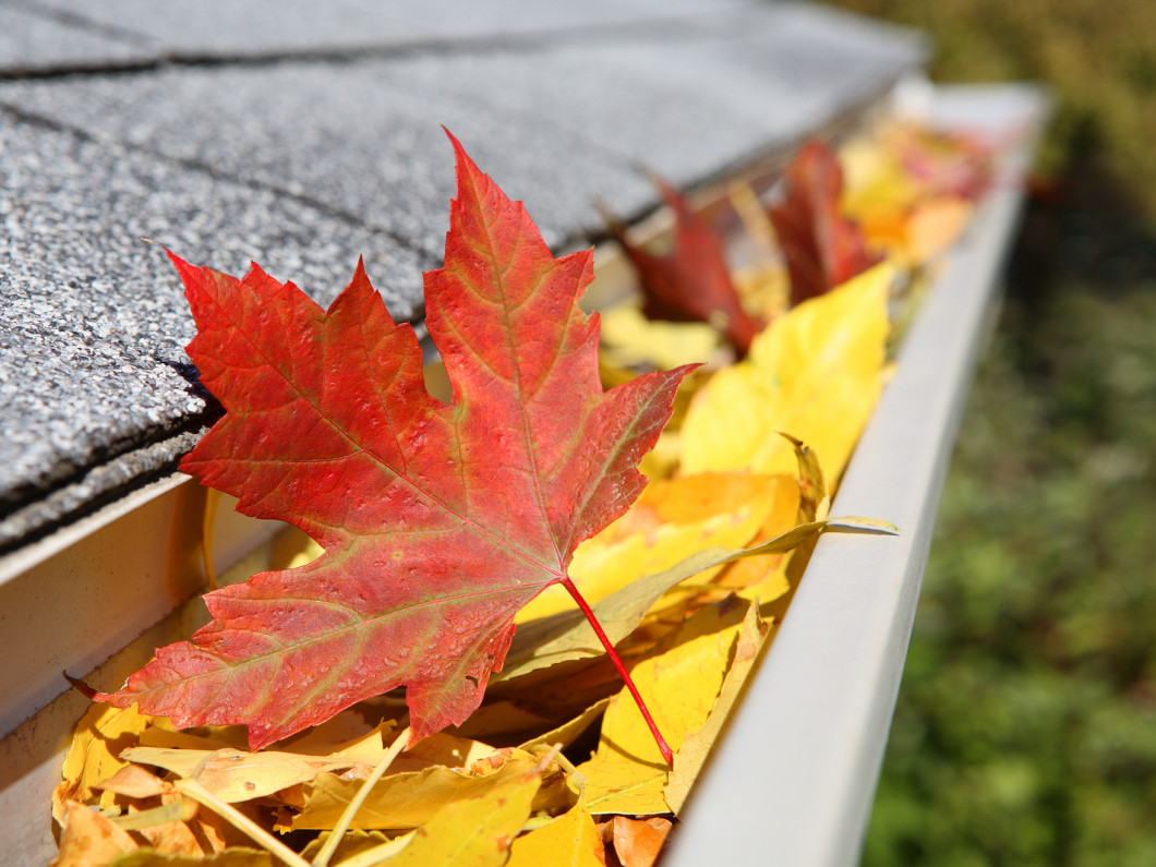 See what types of gutters we service
